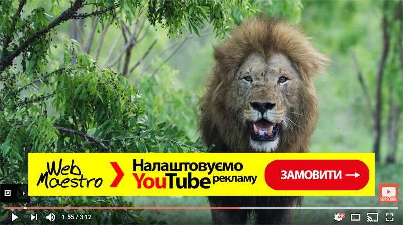 прямоугольные рекламные баннеры под видео в youtube