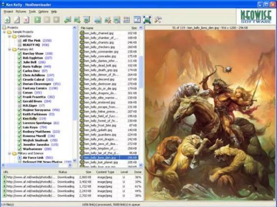 программа NewDownloander v.2.9.3 для загрузки фото из одноклассников на компьютере